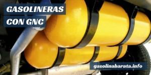 Gasolineras con GNC